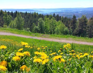 Norway: OSLO